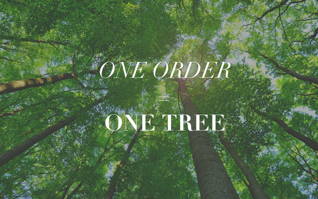 One Order = One Tree