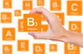 how to raise vitamin b3 levels