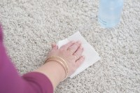 Homemade Carpet Cleaner - Pet Stains - The Organised Housewife
