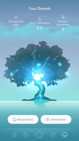 bloom mindfulness app tree