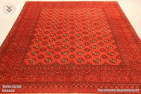 THE ORIENTAL RUG GALLERY LTD  RUGS & CARPETS GALLERY ...