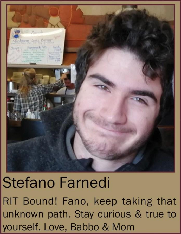 Stefano Farnedi June 2020