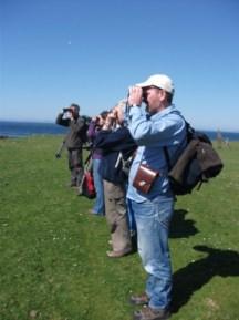 bird watchers on Auskerry B BEll