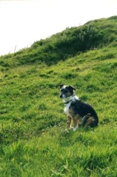 Ben at Cuween June 2000