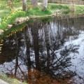 pool at Lews Castle B Bell