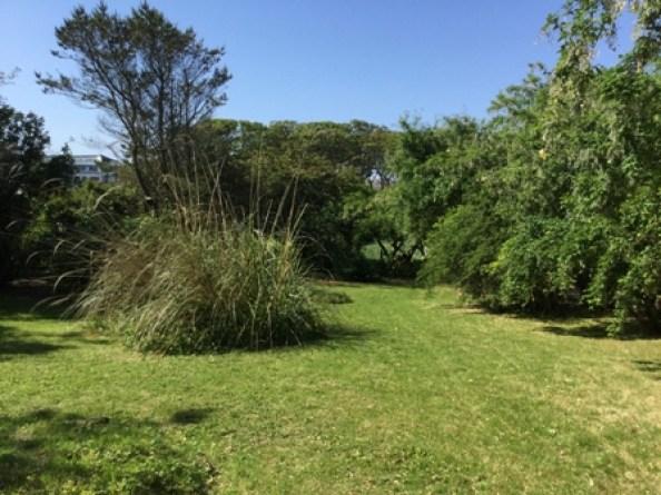 Secret Garden lawn