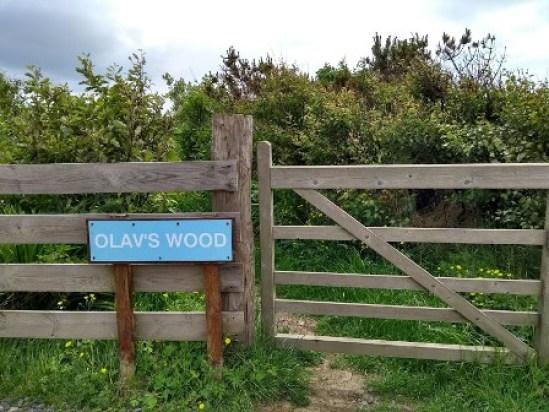 Olavs Wood 6 entrance