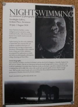poster Night Swimming B Bell