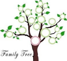 Tree Dna Education Family Frame