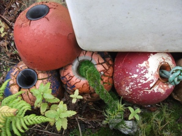 moss garden 2 B Bell
