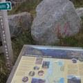 South Ronaldsay walk Bell