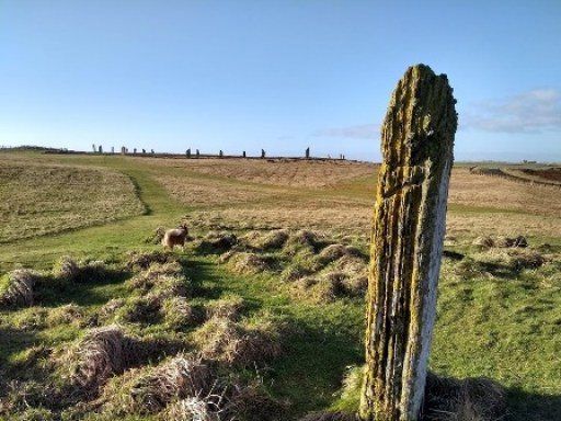 Ring of Brodgar view up from Comet stone