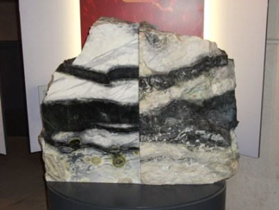 National Museum of Scotland geology