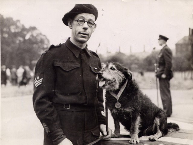 Rip with his handler Mr. King hero dog of WW2