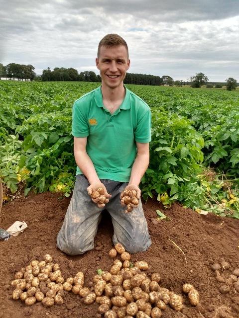 seed potato trials credit