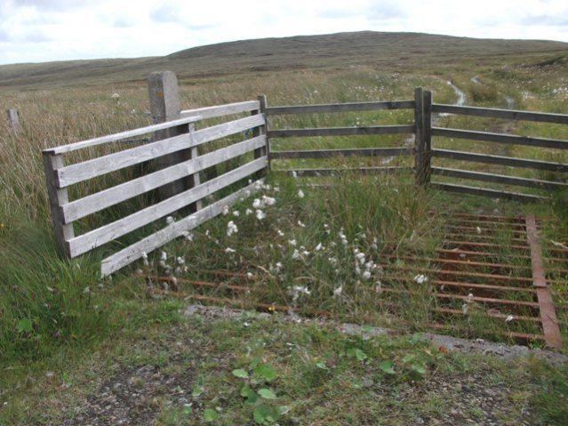 cattle grid Birsay moors credit Bell