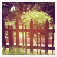 Austin Picket Fence
