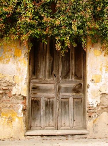 worn-old-wooden-door-img_5225