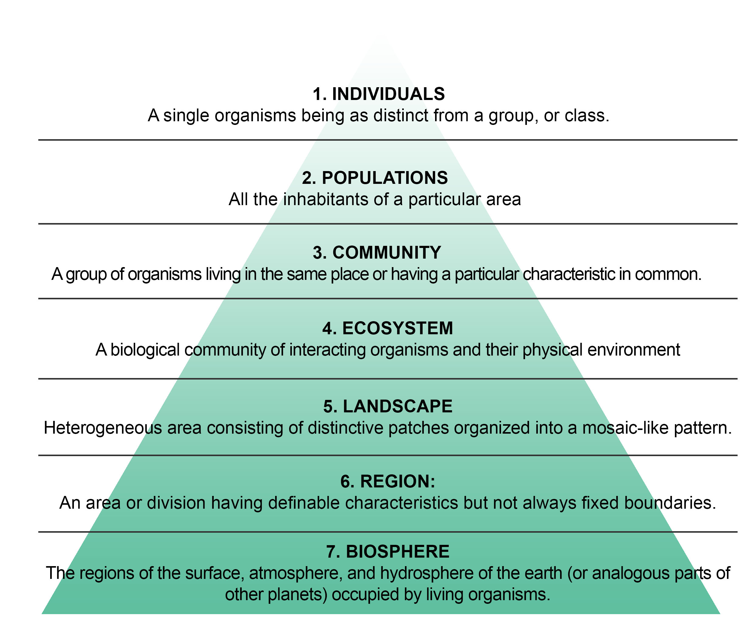 Ecology And The Scale Of Research