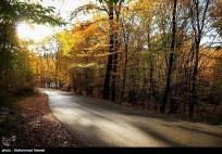 Golestan, Iran - Autumn 01