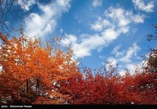 Golestan, Iran - Autumn 02