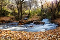 Hamedan, Iran - Autumn in Hamedan 14