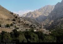Kurdistan, Iran - Zhivar, Sarvabad, Pomegranate Harvest 2014 01