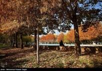 Razavi Khorasan, Iran - Mashhad in Autumn 04