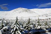Zanjan, Iran - Zanjan's Autumn Snowfall 04