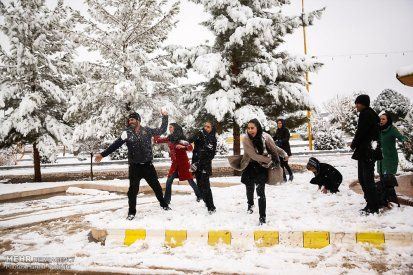 Iran, Kerman Province, Kerman City Winter Snow Snowball 04