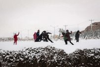 Iran, Kerman Province, Kerman City Winter Snow Snowball 09