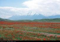East Azerbaijan, Iran - Arasbaran region 11