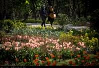 Tehran, Iran - Bagh-e Irani Park 12