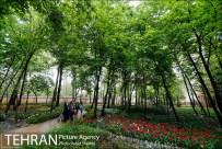 Photo by Vahid Seikhi