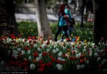 Tehran, Iran - Bagh-e Irani Park 9