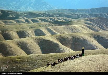 Golestan, Iran - Turkmen Sahra (Plain of Turkmens) 20