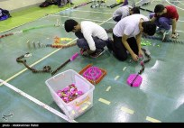 Domino competitions in Hamedan, Iran (2015) 07
