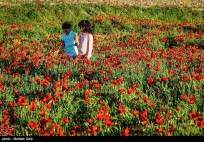 Ardabil, Iran - Spring days across Ardabil Province 14