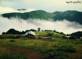 Semnan and Golestan Provinces, Iran - Cloud Forest (Jangal-e Abr) - 14