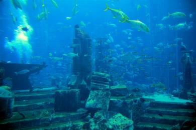 Atlantis Hotel - the aquarium / Lost City - cheesy I guess but well done.