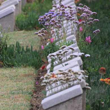 """""""The grave that they dug him had flowers ... """""""