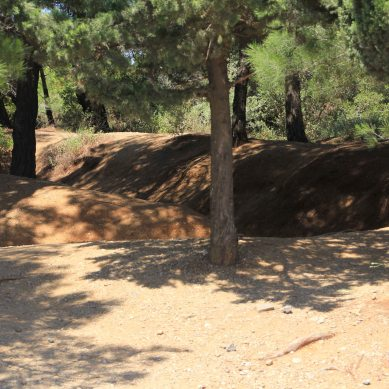 Most of the trenches have been untouched and are slowly filling up, but there are kms of them