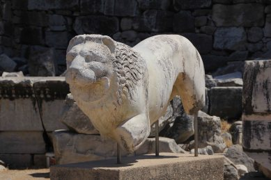 I rather liked this lion.