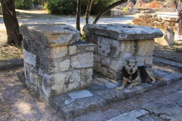 """Monument of the Eponymous Heroes"" once bore statues of mythical heroes of the Athenian tribes, and dog (apparently not a stray)"