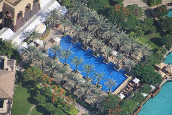 PALM TREES AND A POOL