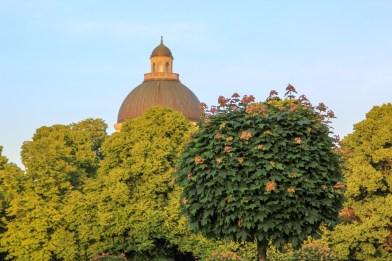 Hofgarten, the former royal garden.
