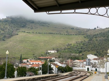 The train station, surrounded by vineyards on the mist-shrouded hills.