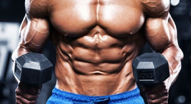 10 Tips To Gain Muscle Mass The Magazine
