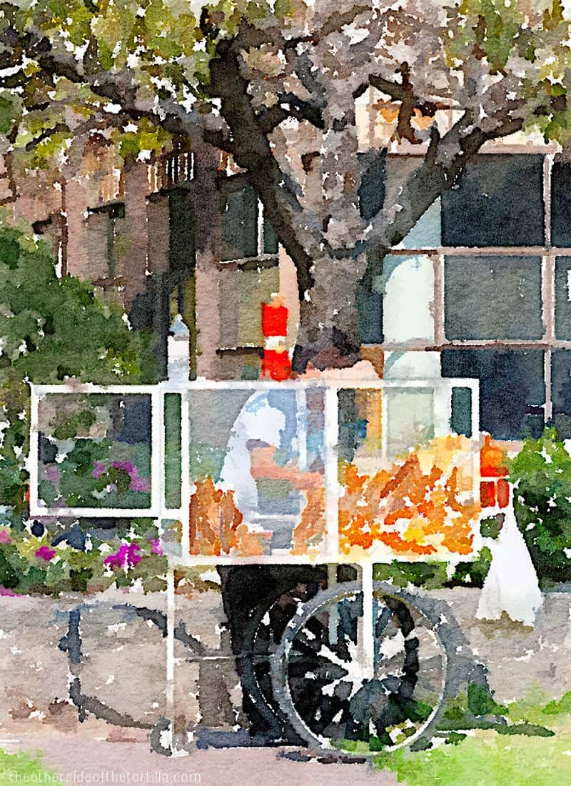 A chicharrón vendor on the UNAM campus in Ciudad Universitaria, Mexico City | More watercolor images of Mexico City on theothersideofthetortilla.com