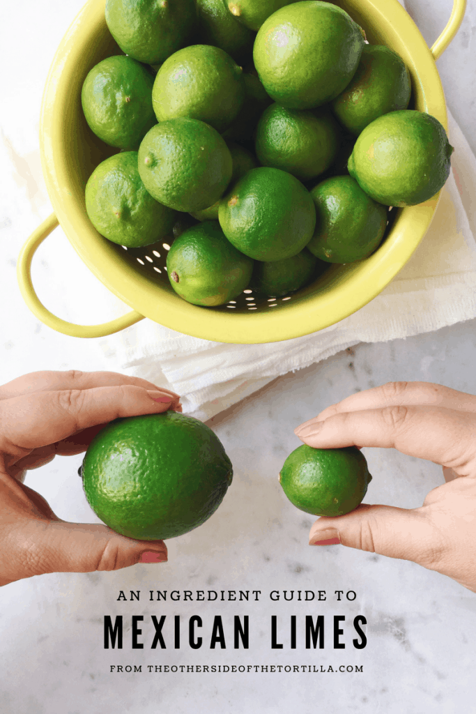 Everything you need to know about Mexican limes, a guide from theothersideofthetortilla.com
